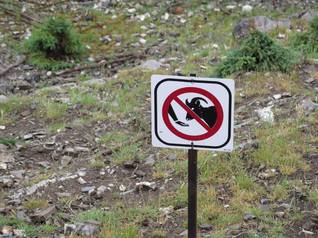 """Schild """"Tiere nicht füttern"""""""